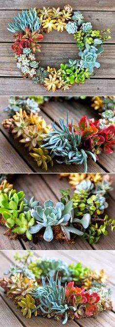 Succulent Wreath | creative planter craft @prettyprudent