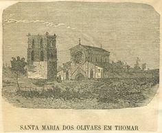 Cavaleiros Guardiães de Santa Maria do Olival: Dezembro 2006