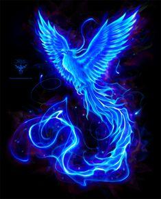 "New phoenix logo design for electronic music producer ""Blue Phoenix"" More info soon Dark Fantasy Art, Fantasy Artwork, Beautiful Fantasy Art, Mystical Animals, Mythical Creatures Art, Magical Creatures, Fantasy Creatures, Phoenix Artwork, Phoenix Wallpaper"