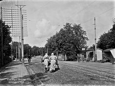 Läntinen Viertotie  Brander Signe HKM 1908 Helsingin kaupunginmuseo Läntinen Viertotie. Nykyinen Mannerheimintie. Oikealla Hesperian puisto.
