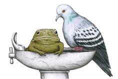 http://www.birdsonthings.com/