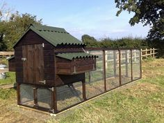 Nicely laid out chicken run with hen house.