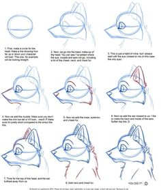 How to Draw: Canine Profile Tutorial by *JustAutumn on deviantART by AroxiaCrystal