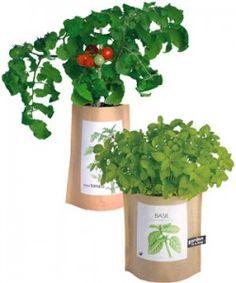 Garden-in-a-Bag