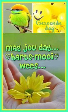 Good Morning Greetings, Good Morning Wishes, Lekker Dag, Afrikaanse Quotes, Goeie Nag, Goeie More, Morning Inspirational Quotes, Morning Blessings, Words