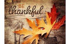 Be Thankful Thanksgiving 4K Wallpaper | Free 4K Wallpaper