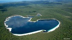 Lake MacKenzie, Fraser Island, QLD, Australia - such a cool place to visit and swim on the island