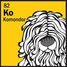 Komondor    http://www.thedogtable.com/the-dog-table/working/komondor
