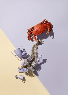 The Voorhes, still life photography, San Fransisco magazine, conceptual, graphic, crab, trophy, color