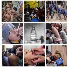 The International Polio Vaccine program.