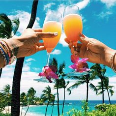 tropical cocktails on the beach - Madison Fawcett - Tumblr Ocean, Beach Tumblr, Beach Pink, Summer Beach, Summer Vibes, Summer Fun, Vacation Pictures, Beach Pictures, Cruise Pictures