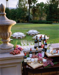 Wine Party in the Garden Wine Tasting Party, Wine Parties, Outdoor Parties, Outdoor Weddings, Wine Cheese, Vintage Wine, Fine Wine, Wine Gifts, Wine Recipes