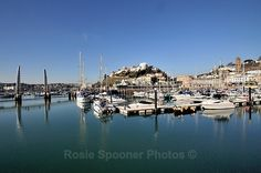 TQ80 - Torquay Harbour and Bridge - Greetings Cards Torquay (separate galleries for Meadfoot Beach and Cockington)