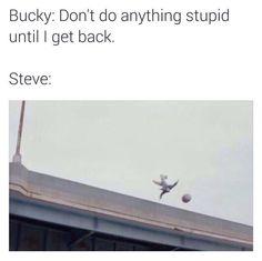 """""""Steve: Does something stupid anyway""""<<Well, technically speaking, he was back, so. Marvel Funny, Marvel Memes, Marvel Dc Comics, Marvel Avengers, Bucky Barnes Captain America, Chris Evans Captain America, Bucky And Steve, Stucky, Sebastian Stan"""