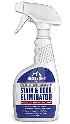 Professional Strength Stain & Odor Eliminator