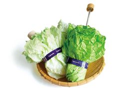 """""""Oh shoot, it's starting to rain. I look into my bag. Nothing there but that fresh head of lettuce I always carry around. Oh, but wait! It's not lettuce. It's an umbrella!    That's the type of scenario I imagine would happen if I had this Vegetabrella (4,725 yen) designed by Yurie Mano for h concept."""""""