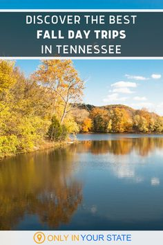Discover some of the best and most beautiful fall day trips in Tennessee. Explore nature at these outdoor destinations including waterfalls, state parks, and Great Smoky Mountain National Park! You'll find hiking trails, kayaking, horseback riding, camping, foliage, historic drives and plenty of photo opportunities. All make for great local vacation spots! Beautiful Places In America, Fall Vacations, Tennessee Usa, Hidden Beach, Smoky Mountain National Park, Cades Cove, Great Smoky Mountains, Amazing Grace, Horseback Riding