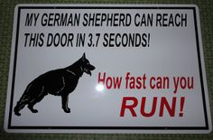 German Shepherd in 3.7 seconds haha best guard dog! I would always feel safe with him watching my house!