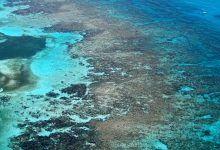 Things to do: Visit Florida Keys National Marine Sanctuary. Visit Florida, Florida Travel, Florida Keys, Fl Keys, Gods Glory, Small Island, Archipelago, Global Warming, Dream Vacations
