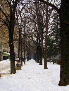 Urban Fairytale Capital Of Romania, Bucharest, Fairytale, Travel Guide, Explore, Photography, Outdoor, Desk, Fairy Tail