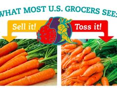 Who you callin' ugly? Join the campaign to end food waste now!
