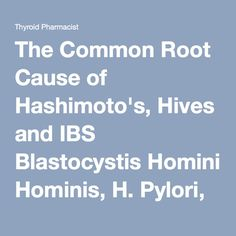 The Common Root Cause of Hashimoto's, Hives and IBS Blastocystis Hominis, H. Pylori, and Yeast Over Growth Disease Symptoms, Thyroid Disease, Hives Causes, Chronic Hives, Chronic Pain, Hives Remedies, Hashimoto, Urticaria, Adrenal Health