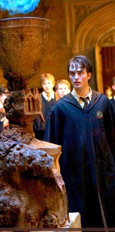 Harry Potter - Goblet of Fire Cedric Diggory Robert Pattinson Magia Harry Potter, Harry Potter Goblet, Harry Potter Universal, Harry Potter Characters, Harry Potter World, Harry Porter, Teatro Musical, Goblet Of Fire, Harry Potter Pictures