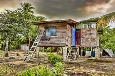 Old wooden,clapboard,galvanize house built on stilts on the edge of a mangrove swamp located in Mayaro, Trinidad, The Caribbean