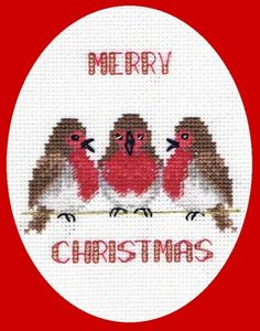 Chirping Robins on a Christmas card.