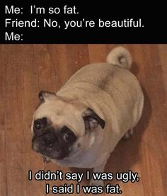 I didn't say I was ugly, I said I was fat. | Funny pictures, best quotes, funny memes pictures and jokes - FunnyKey.com /><meta name=