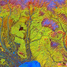 "Image taken by Landsat 5 on June 15, 2005: ""along the edge of Russia's Chaunskaya Bay (vivid blue half circle) in northeastern Siberia"