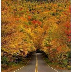 Vermont-Usa