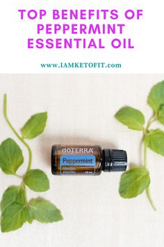 Peppermint Oil Doterra, Peppermint Essential Oil Benefits, Peppermint Oil Uses, Peppermint Tea, Lemon Essential Oils, Essential Oils For Breathing, Doterra Oils, Recipes, Top
