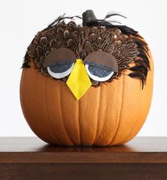 Google Image Result for http://blog.sndimg.com/hgtv/design/Liz/Pumpkin-Kayla-Owl.jpg