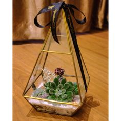 $32 terrarium prismatic for home decor