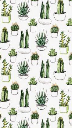 Imagen de wallpaper, cactus, and plants