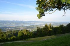 Aussicht vom Bachtel - Zürcher Oberland Route Planner, Zurich, Mountain Biking, Switzerland, Vacations, Skiing, Trail, River, Mountains