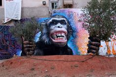 WD in Athens, Greece