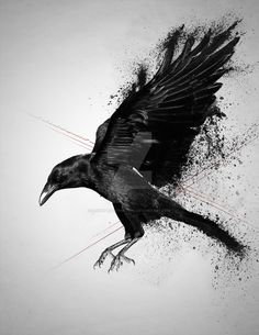 Nice Crow Tattoo Design by Death by Affection : Crow Tattoos Music Tattoos, Body Art Tattoos, Sleeve Tattoos, Hand Tattoos, Tatoos, Crow Art, Raven Art, Raabe Tattoo, Trendy Tattoos