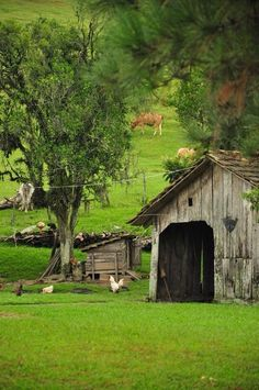 Down on the Farm Barn Farm Barn, Old Farm, Country Barns, Country Living, Country Roads, Esprit Country, Vie Simple, Country Scenes, Farms Living
