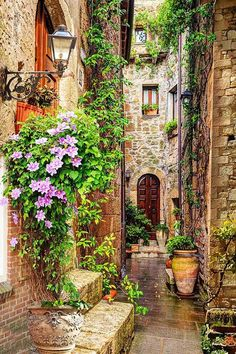 What a great photo Sweet alley in Tuscany Tour Italy Wall. - What a great photo Sweet alley in Tuscany Tour Italy wanderlust - Italy Landscape, Sky Landscape, Photos Voyages, Tuscany Italy, Venice Italy, Sorrento Italy, Italy Italy, Capri Italy, Naples Italy