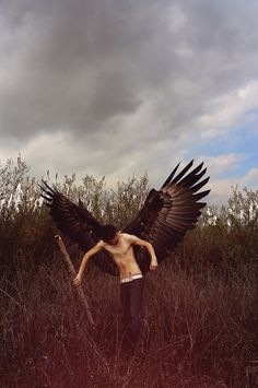 ...wings grew from my back; large enough to carry me to a thousand lands and more...