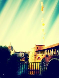 Pavia, covered bridge