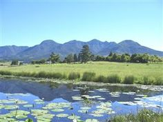 Malvern Manor Country Guest House Holiday Accommodation, South Africa, Holidays, Mountains, Country, Nature, House, Travel, Holidays Events