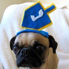 Soooo funny!!!  Pet Lover Gift  holiday pet costume  HANUKKAH DREIDEL by ilickyou, $14.00