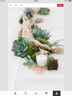 I love this concept, but want to figure out how to make it work on a round table. I do not want the moss and the sea-glass.I like the grapevine/driftwood, succulents and candles.