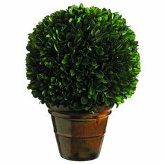 cool  Preserved boxwood Green color One per Box   https://www.silkyflowerstore.com/product/silk-decor-preserved-boxwood-ball-plant-10-2-inch-green/