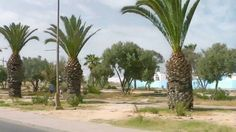 Viaggio In Marocco Partiamo Per La Gazelle d'Or Hotel Taroudant 1