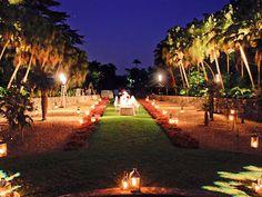 Fairchild Tropical Botanic Gardens Coral Gables Florida Wedding Venues 4