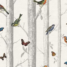 Romantic wallpaper model Rovoloni is an homage to the natural beauty of forests as well as their colourful inhabitants, like birds and butterflies. Orange Wallpaper, Bird Wallpaper, Fabric Wallpaper, Pattern Wallpaper, Wallpaper Ceiling, Cheap Wallpaper, Orange Tapete, Chinoiserie Wallpaper, Deco Originale